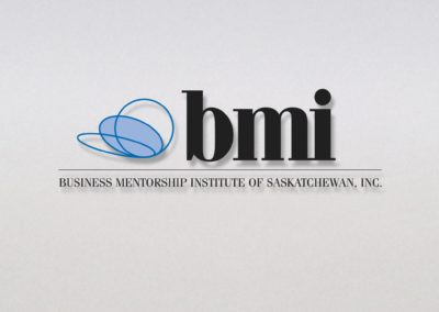 Business Mentorship Institute